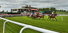 Booking Kelso Races